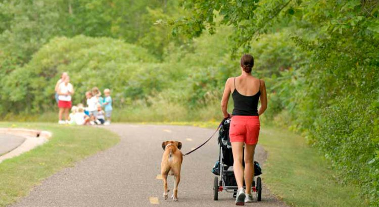 Lady in red shorts and sleeveless black top jogging in a park while pushing a stroller and with a light brown dog on a leash