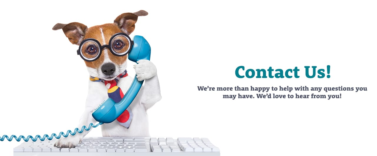 """Jack Russell Terrier with glasses on and a keyboard holding a blue phone with """"Contact Us"""" written next to him"""
