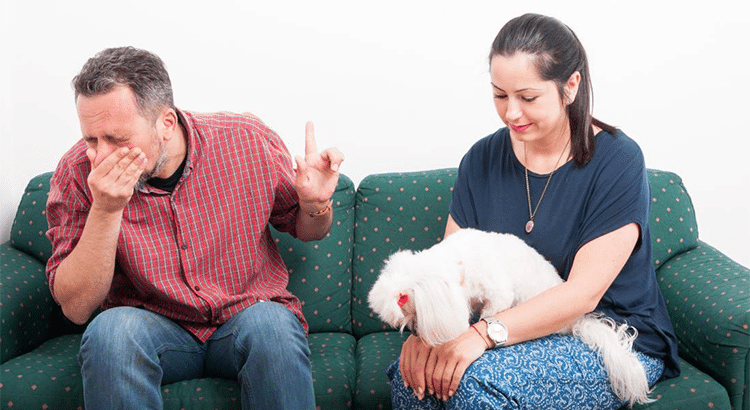 Woman sitting on a green couch holding a white dog and a man next to her covering his mouth, sneezing